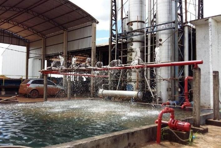 Usina no RS produzirá etanol a partir da batata-doce