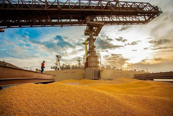 Exportações de milho do Mato Grosso caem 11%; Irã, Egito e Espanha são principais clientes