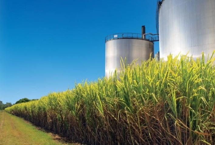 Por que a decisão do Japão de acabar com os veículos a gasolina abre oportunidades para as usinas de etanol do Brasil