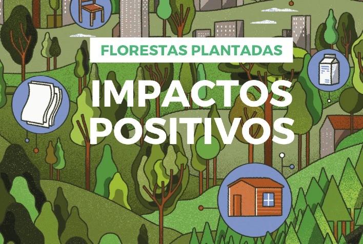 Apre lança vídeo sobre os impactos positivos das florestas plantadas