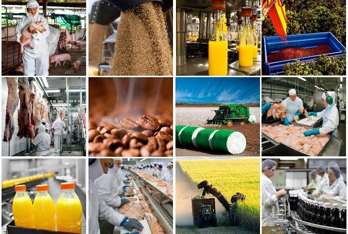 Valor Bruto da Produção agropecuária deve atingir R$ 1,192 trilhão em 2021