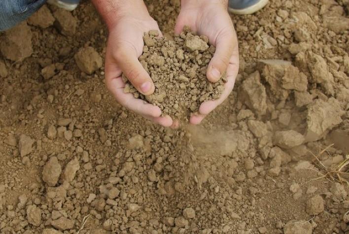 Mais de 25 mil agricultores familiares irão receber benefício do Garantia-Safra em abril